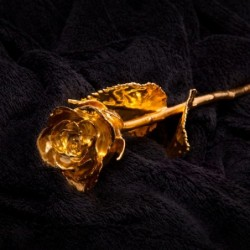 NOVELTY - Gold Rose